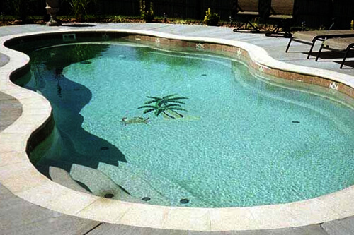 Fiberglass Pool Options Family Image